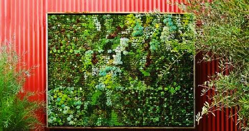 Garden and farms vertical succulent panel garden for Vertical garden panels