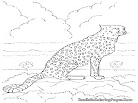 free coloring pages of cheetah