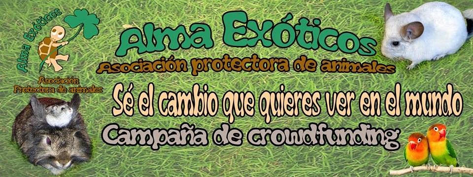 https://www.indiegogo.com/projects/alma-exotcos-ayuda-a-los-animales-mas-olvidados/x/8146268