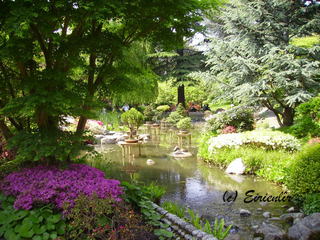 Eirienl r jardin japonais albert kahn boulogne billancourt - Jardin d eveil boulogne billancourt ...