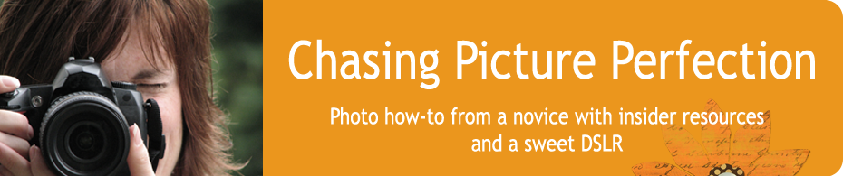 Chasing Picture Perfection — Real Photo Tips for Snapshooters