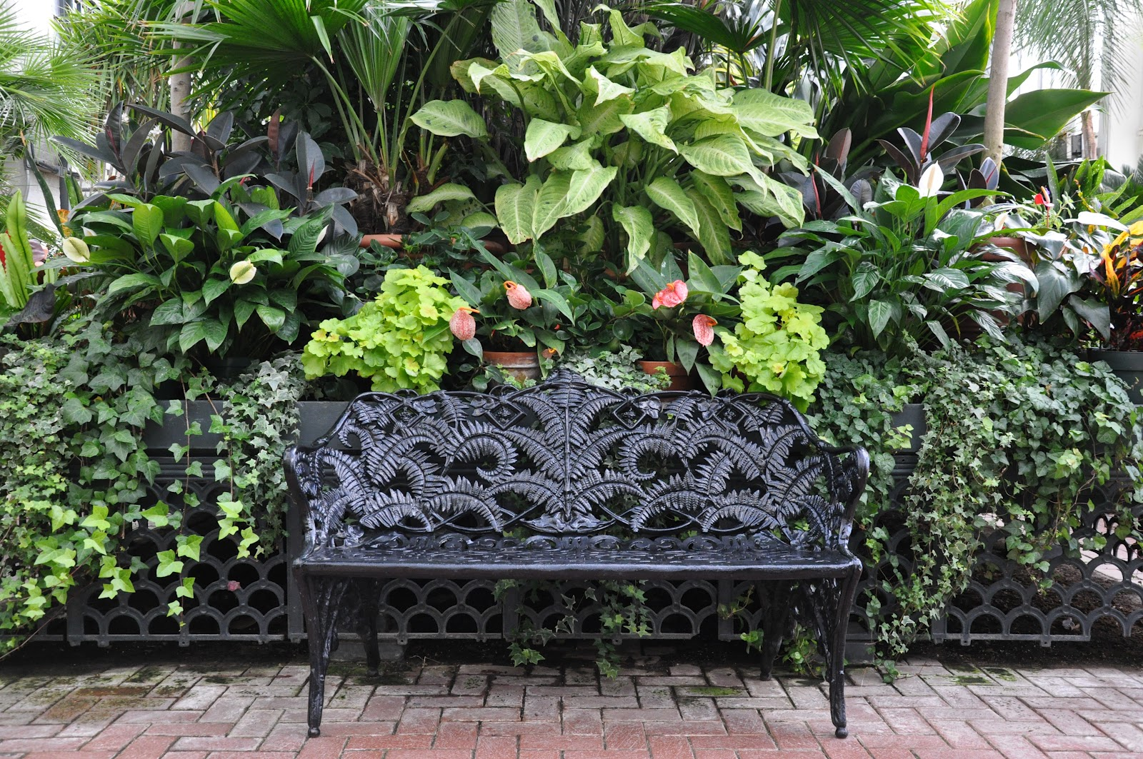 How to biltmore container gardens - Container gardening basics ...