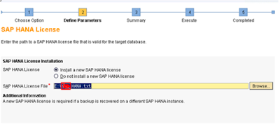 SAP HANA Homogeneous