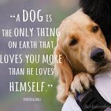 Hondenwijsheid