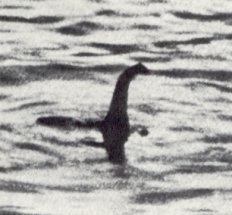 A silhouette of a long neck and head stretching out of the water