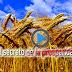 EL SECRETO DE LA PROSPERIDAD / QUIERES SABER COMO.... MIRA ESTE VIDEO