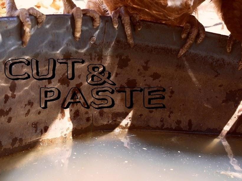 http://cutnpasteyoface.blogspot.co.nz/