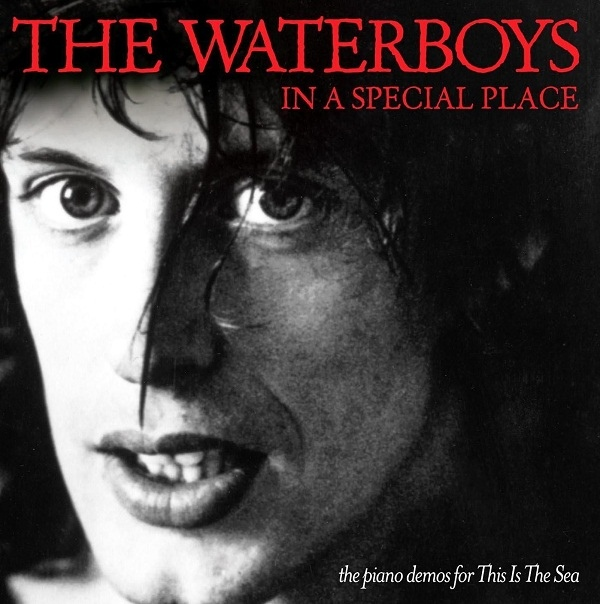 THE WATERBOYS - In a special place