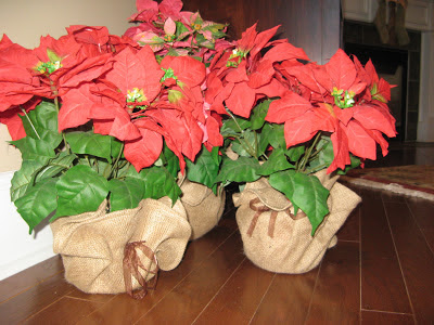 Silk Poinsettias, Burlap Base