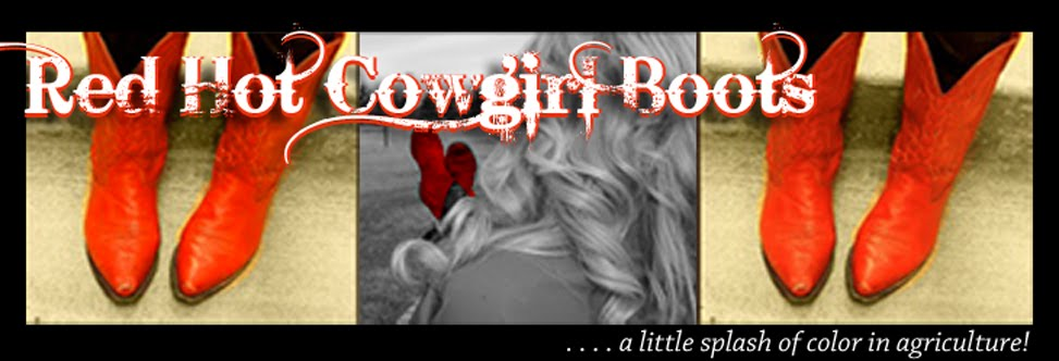 red.hot.cowgirl.boots