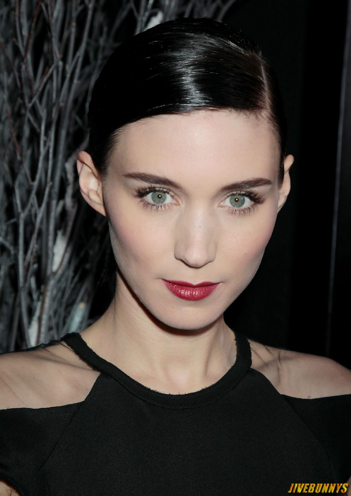 Previous Gallery Of Rooney Mara