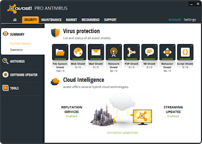Avast Pro Antivirus 2013 Free Download Full Version