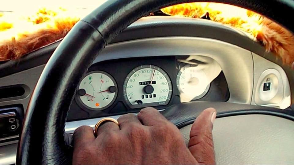 Palio Sport, Fiat Car