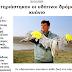 Οι «Σκουριές» της Ρουμανίας ….δηλητηριάστηκαν οι υδάτινοι δρόμοι από κυάνιο.