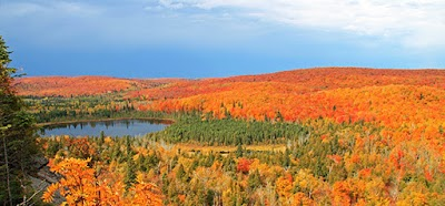 Visit Minnesota state forests for fall color driving tours