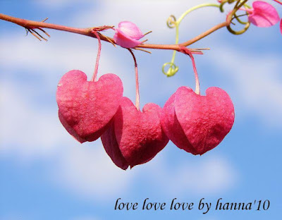 Kasih Sayang ada didalam Hati
