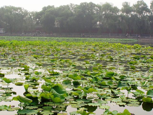 Beihai Park Beijing