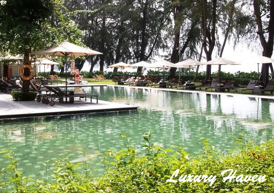 lone pine hotel penang infinity salt water pool