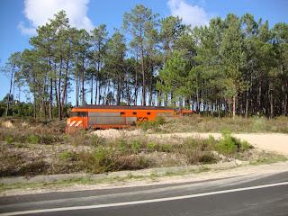 Orange train in The Field Photo