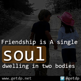 what is a friend a single soul dwelling in two bodies Aristotle said that friendship is a single soul dwelling in two bodies what does this mean.