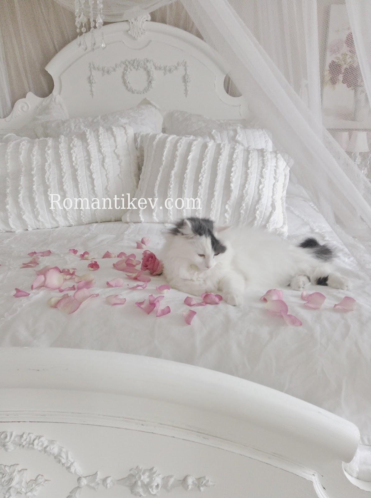 romantic shabby chic home romantic shabby chic white whisper. Black Bedroom Furniture Sets. Home Design Ideas