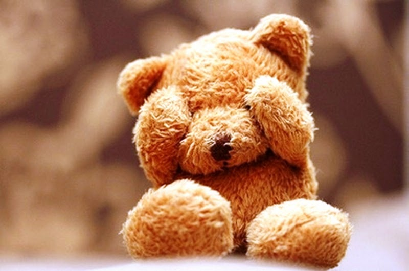 Eyes Closed Cute Teddy Bear Day Pics Images Wallpaper