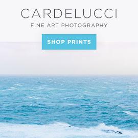 cardelucci