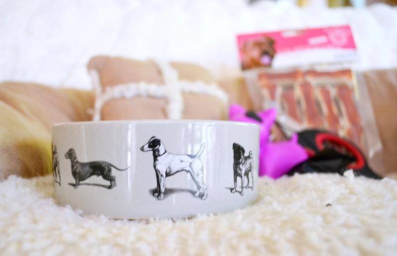 Hunde Keramik Napf
