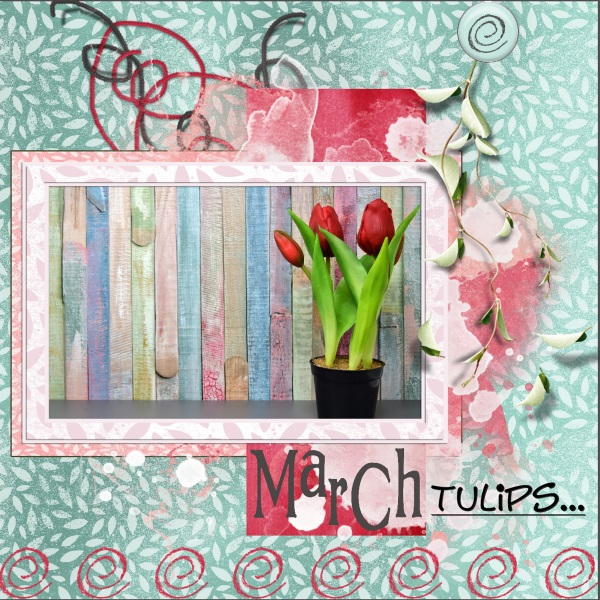 March 2018 - March-Tulips....