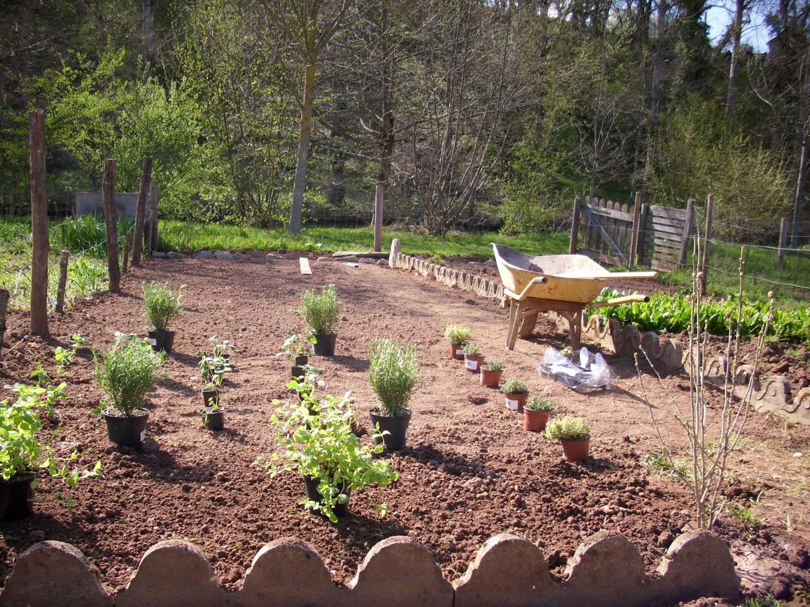 Am nagement de terrasse et potager mon petit jardin ouvrier for Jardin ouvrier