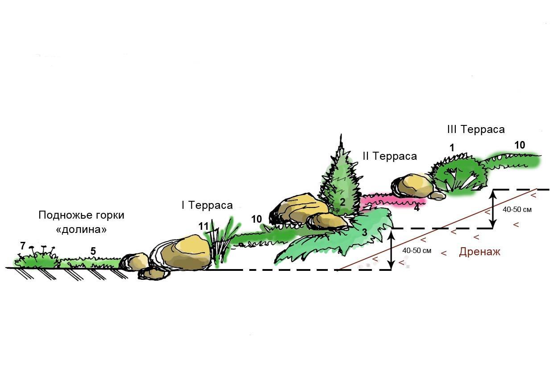 Рекомендации как правильно сделать альпийскую горку.