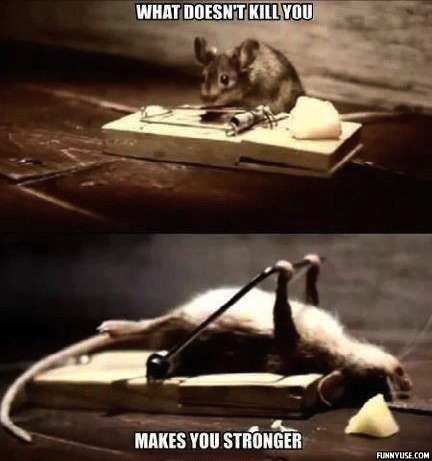 What doesn't kill you makes you stronger  Funny Pictures