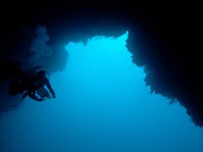 kızıldeniz, dalış, tur, scuba, blue hole, abu nuhas, ras muhammed, safari, köpekbalıkları, cafecik, tekne konaklamalı dalış turu, kızıldenizde dalış, red sea