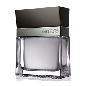 Guess Seductive Homme for men