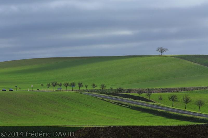 champs arbre nuages ombres lumière Seine-et-Marne