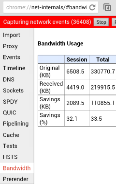 chrome //net-internals/#dns android