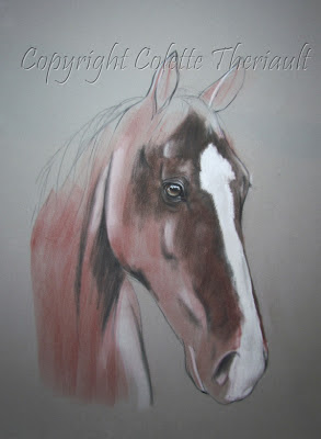 Horse Painting portrait commission in progress by Animal Artist Colette Theriault