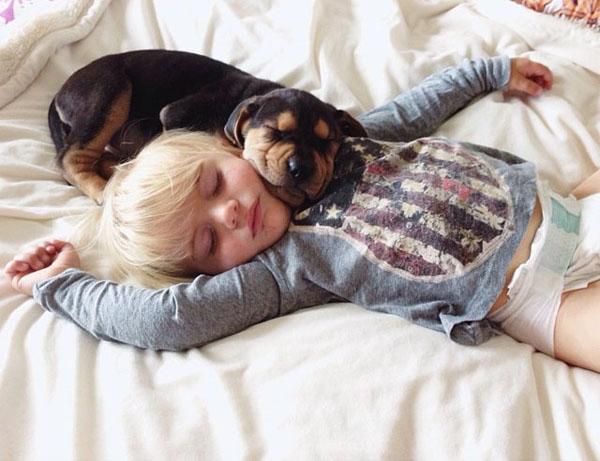 Amigos para sempre Theo e Beau