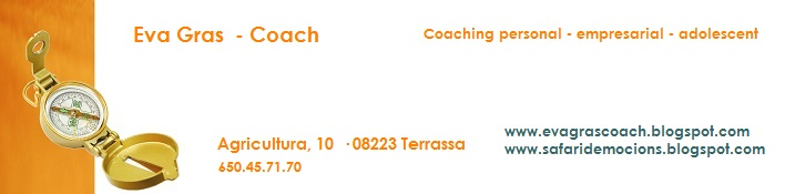 Sessions de coaching