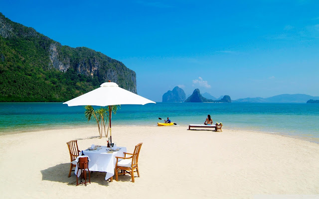 Best Jungle Life tropical, beach, paradise, wallpaper