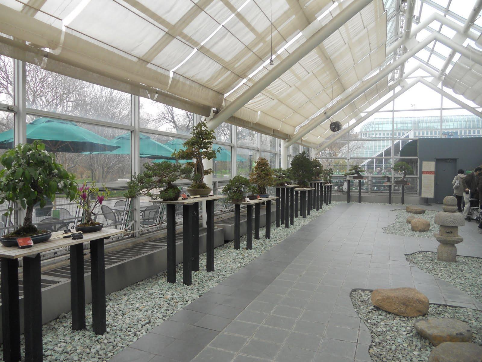 Journeys And Jonquils Weekend Trip The Brooklyn Botanic Garden