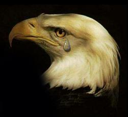 American Eagle Crying
