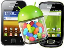 Samsung Galaxy Young Jelly Bean