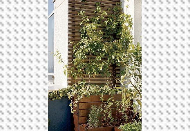trelica jardim madeira:treliça de ipê, escurecida com betume e envernizada com seladora