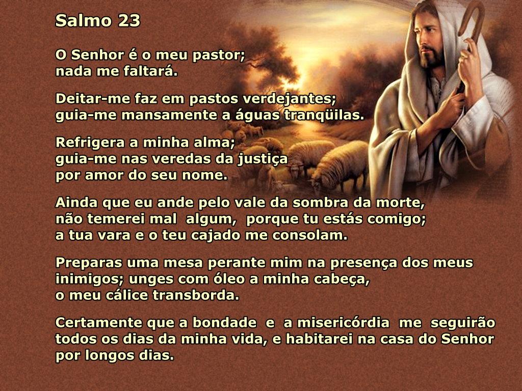 salmo 23 Da Noite Pastor com as ovelhas