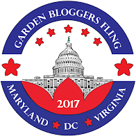 Fling with us in the Capital Region - June 22-25, 2017