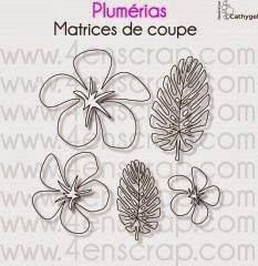 http://www.4enscrap.com/fr/les-matrices-de-coupe/329-plumerias.html