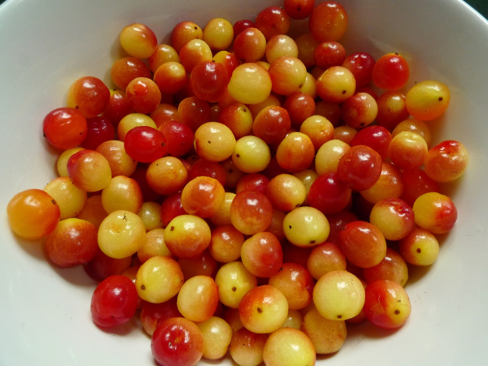 Image Result For How Much Cranberry