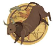 Zodiac Chinezesc Bou/Bivol