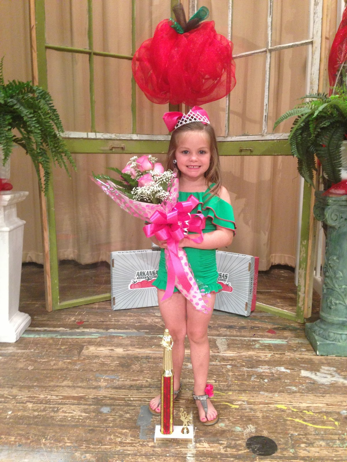 Saline River Chronicle News: Alli Cathy Crowned Little Miss Pink